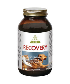 Recovery Powder