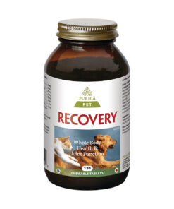 Recovery Chewable Tablets
