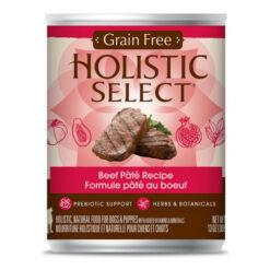 Holistic Select Beef Pate Recipe Grain-Free Canned Dog Food