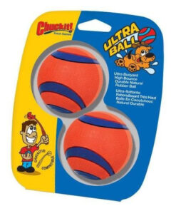 ChuckIt! Medium Ultra Balls