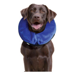 KONG Cloud Collar for Dogs & Cats