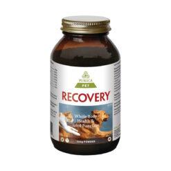 Recovery Extra Strength Powder