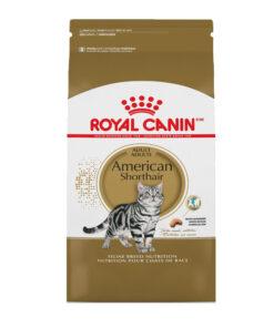 Royal Canin American Shorthair Adult Dry Cat Food