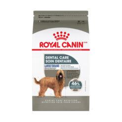 Royal Canin Dental Care Large Dog Food