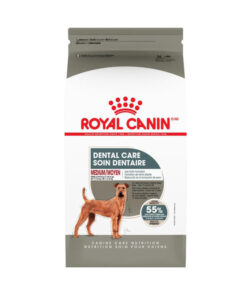 Royal Canin Dental Care Medium Dog Food
